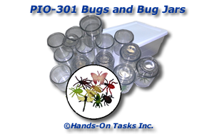 Bugs and Bug Jars Put-In Activity