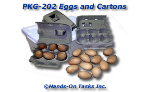 Eggs and Cartons Packaging Activity