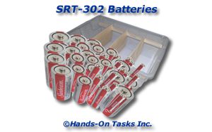 Battery Sorting Activity